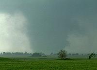Barrel Tornado Video