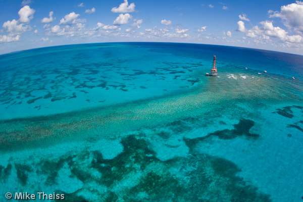 _MG_0333 - The wonderful world of coral reefs  - Science and Research